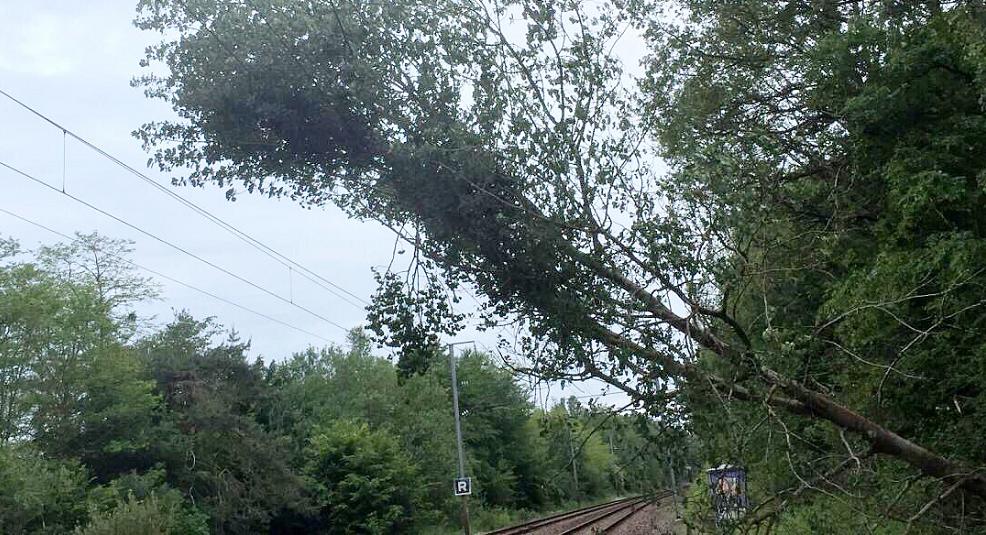 Un train a heurté un arbre couché sur la voie entre Conches-en-Ouche et Romilly-la-Puthenaye et a endommagé une caténaire  - Photo@ SNCF /Twitter