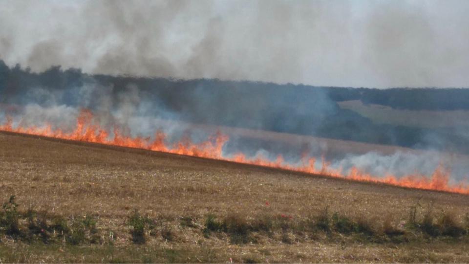 Le champ de chaume a été dévasté par les flammes - Illustration @ infonormandie