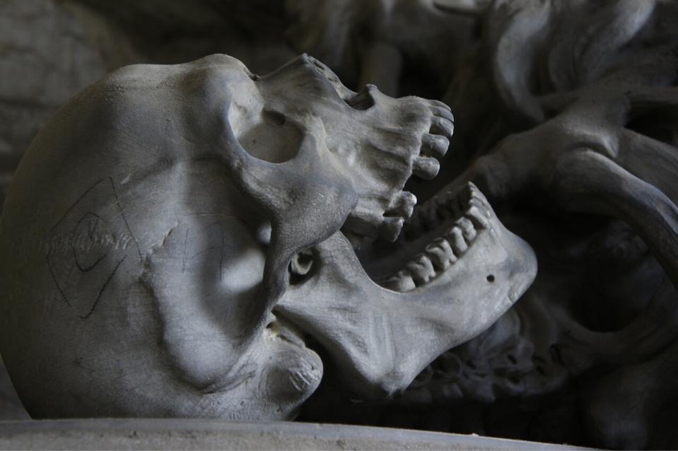 Un crâne notamment a été retrouvé dans ce sac qui contenait une dizaine d'ossements - Illustration @ Pixabay