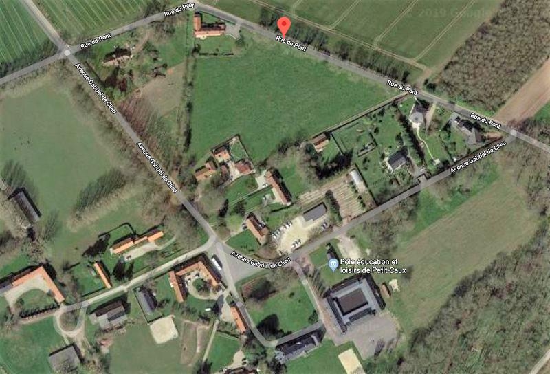 Les sapeurs-pompiers de Seine-Maritime au secours d'un veau tombé dans un trou à Derchigny