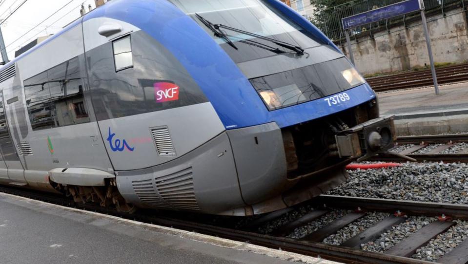 L'homme se serait jeté sous le train, selon les premiers éléments - illustration