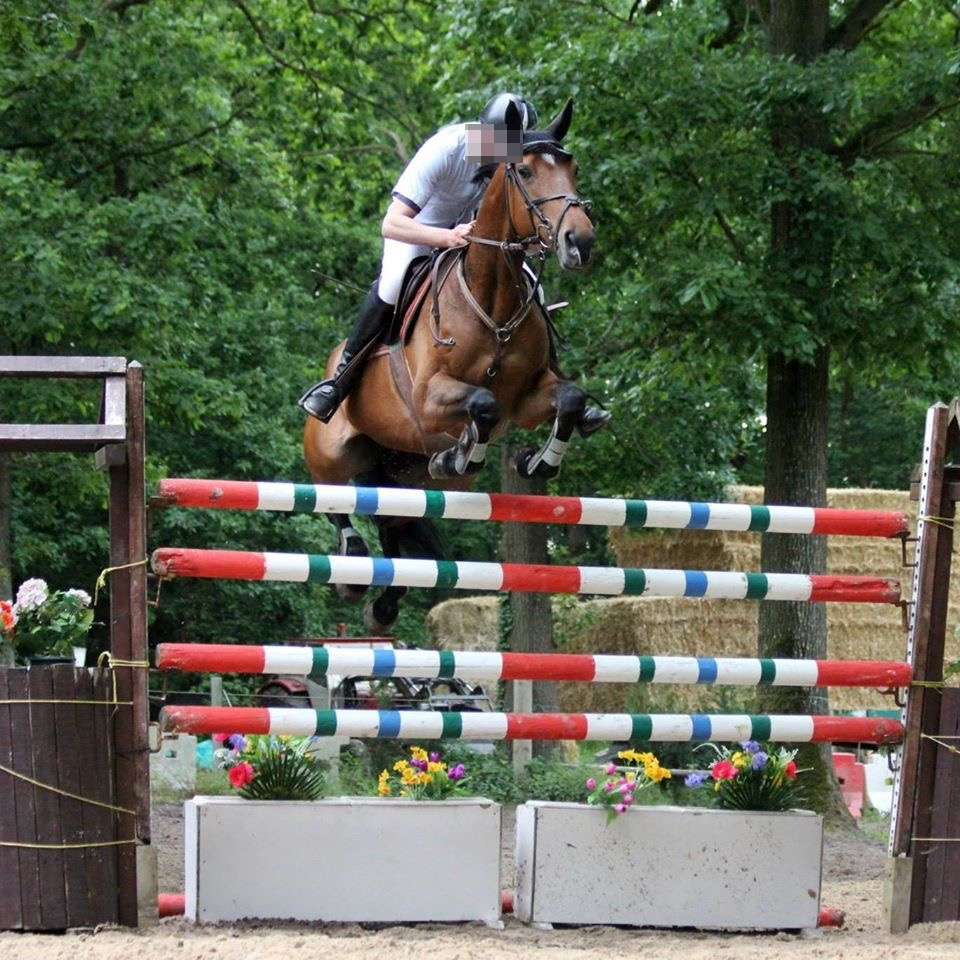 Le directeur du centre équestre a participé à plusieurs jumping et concours équestres en Normandie (Illustration)