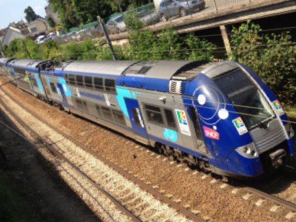 Un voleur surpris en train de faire les poches d'un voyageur dans le Paris-Rouen