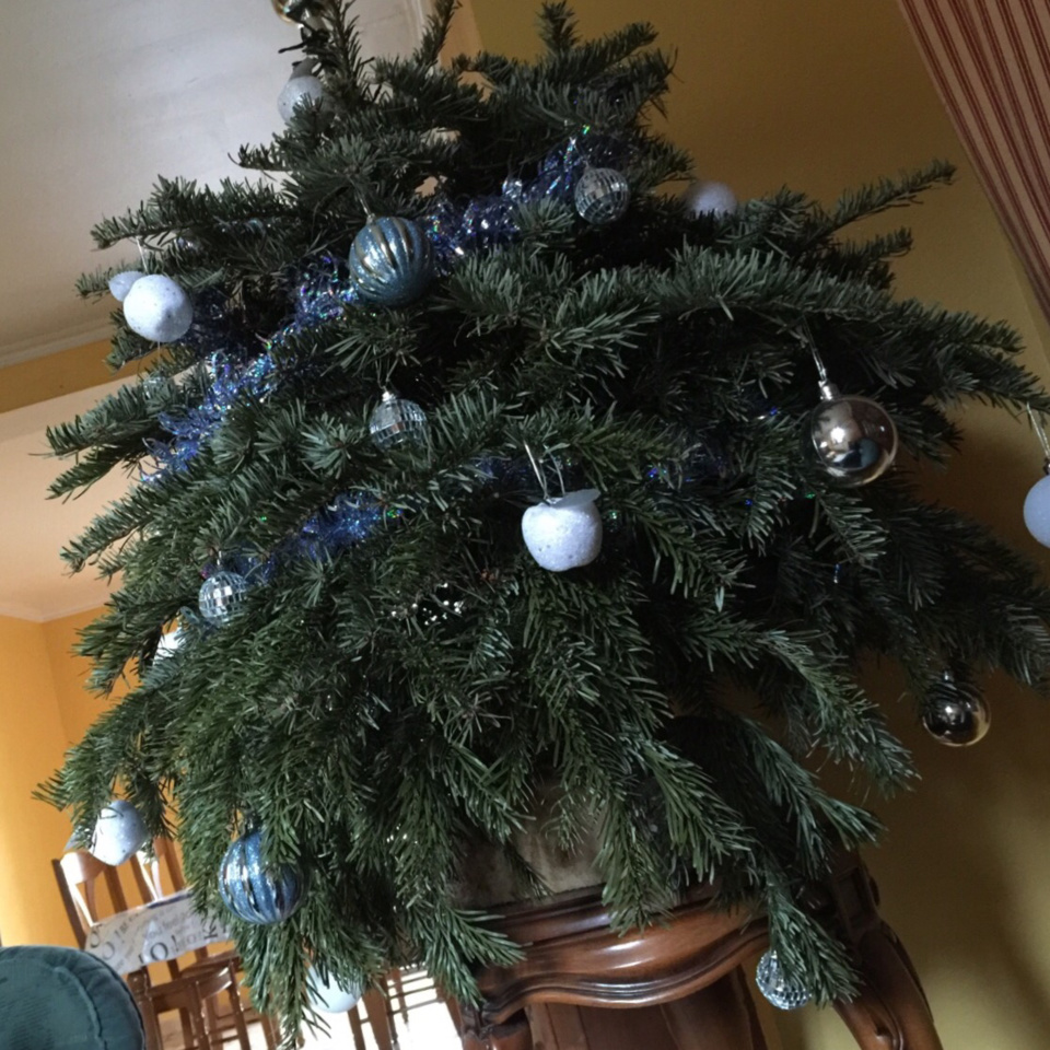 Yvelines : le sapin de Noël s'enflamme et détruit le pavillon à Plaisir