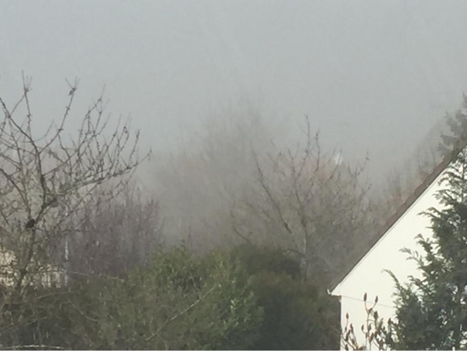 Des bancs de brouillard sont observés ce matin dans l'Eure