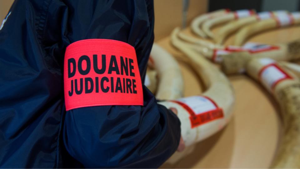 Photos@Douanes françaises
