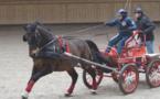 7e édition du concours indoor les 18 et 19 mars : les attelages font sensation à Deauville