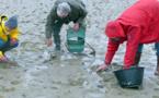 Forts coefficients de marées dès ce mercredi sur le littoral normand : les précautions à prendre