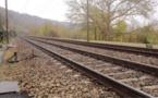 Yvelines : une octogénaire tuée par un train à Gazeran