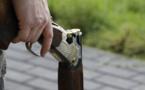 L'homme a reconnu avoir tiré en l'air avec un fusil de chasse - Illustration @Pixabay