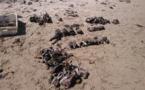 Normandie : 130 obus en cours de déminage sur la plage de Réville (Manche) ce mardi