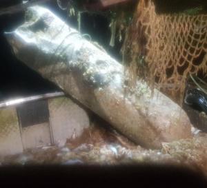La bombe est d'origine allemande et pèse près d'une tonne - Photo © Préfecture Maritime
