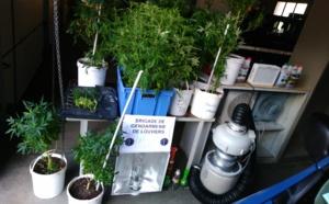 Roué de coups pour une dette de drogue : trois interpellations dans l'Eure