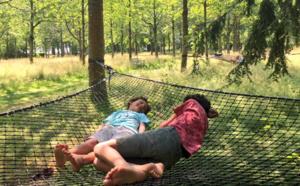 Siestes, visites, ateliers, spectacles… Le programme de l'été au domaine d'Harcourt
