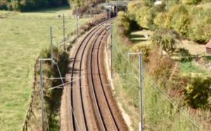 Trafic perturbé sur la ligne Paris - Caen à cause d'un arbre tombé sur une caténaire près de Bernay