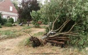 Tempête Ciara : les pompiers sont sortis près de 300 fois en Seine-Maritime et dans l'Eure