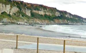 Le chien chute d'une falaise, près du Havre : il est récupéré sain et sauf par les pompiers du Grimp
