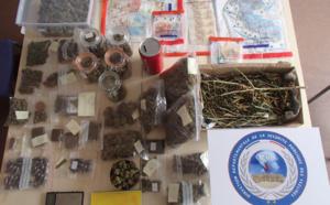2,3 kg de cannabis et 10 000€ saisis chez deux trafiquants à Conflans-Sainte-Honorine