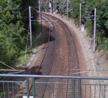 La circulation des trains stoppée sur la ligne Le Havre - Rouen : une femme percutée par un train à Foucart