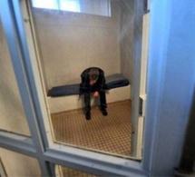 Evreux : il vient tambouriner dans la porte de son ex-concubine, il est placé en garde à vue