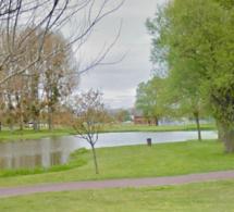 Un millier de poissons victimes d'un manque d'oxygénation dans l'étang du parc Jacques-Guérillon au Trait