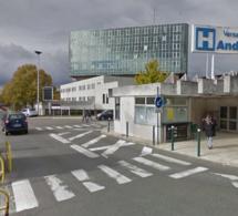 Yvelines : un chien mord un enfant et une voisine avant de provoquer la panique dans la rue