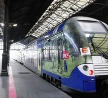 Un mort dans une collision avec un TER près de Deauville : trafic SNCF interrompu entre Trouville et Lisieux