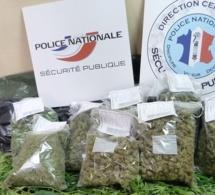 Rouen (Seine-Maritime) : de l'herbe de cannabis et des petites coupures découverts sur un jeune homme