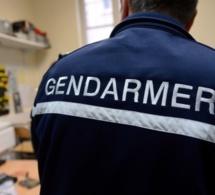 Seine-Maritime : le gardien de l'abbaye de Jumièges surprend un cambrioleur dans son domicile