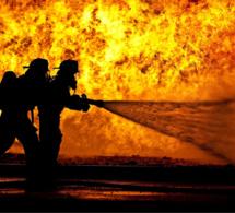 Seine-Maritime : 380 animaux périssent dans l'incendie d'une exploitation agricole à Yerville