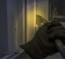Eure : réveillé par un bruit suspect, le propriétaire crie et met en fuite les cambrioleurs à Breuilpont