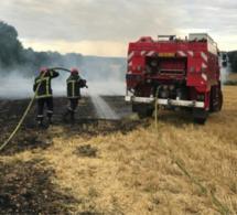 Eure : une moissonneuse-batteuse prend feu, 5 ha de blé détruits à Saint-Pierre-du-Val