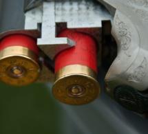 Coups de feu dans l'Eure : des armes et 2500 cartouches saisies chez un ancien militaire