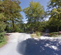 Rambouillet : un homme découvert par des promeneurs pendu à un arbre en forêt
