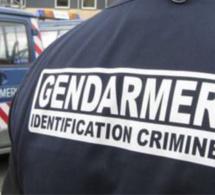 Les gendarmes les soupçonnent de vols dans l'Eure et le Calvados : trois suspects arrêtés au Havre