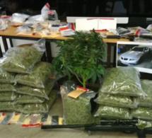 Un trafic de stupéfiants démantelé en Seine-Maritime : huit interpellations