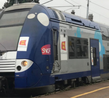 Accident de personne : la circulation des trains interrompue entre Rouen et Serqueux