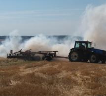 Seine-Maritime : 1 hectare de chaume détruit par le feu à Ferrières-en-Bray