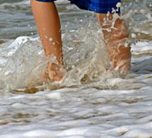 Seine-Maritime : une fillette échappe à la noyade sur la base de loisirs de Jumièges,