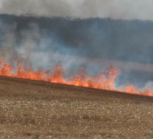 Seine-Maritime : 13 hectares de récolte sur pied ravagés par un incendie à Boos