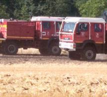 Huit feux toujours actifs ce matin dans l'Eure où 1 500 ha de culture ont été détruits hier