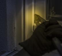 Yvelines : l'auteur de plusieurs  cambriolages est interpellé à la maison d'arrêt de Nanterre