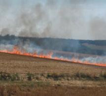 Nouveaux incendies de culture dans l'Eure : 17 hectares brûlés cet après-midi