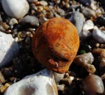 Intervention en urgence des plongeurs démineurs sur la plage de Pourville, près de Dieppe