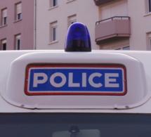 Délit de fuite, défaut de permis, ivre au volant... : l'automobiliste est retrouvé derrière un buisson !