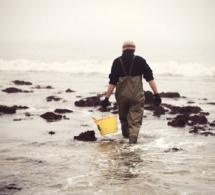 Grandes marées : appel à la prudence sur le littoral de la Manche