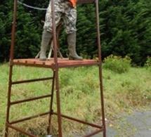 Eure : Qui a volé les miradors en forêt de Saint-Aubin-de-Scellon ?