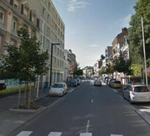 Une centaine d'érables malades remplacés par des poiriers d'ornement, au Havre