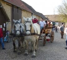 Portes ouvertes à la ferme des Noës ce week-end à Saint-Aubin-sur-Gaillon