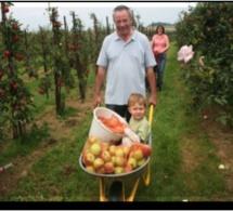 Notez-le : « Vergers ouverts » chez les pomiculteurs les 30 et 31 août, dans le Calvados